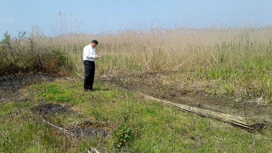 جلوگیری از تصرف اراضی تالاب انزلی