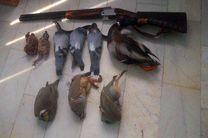 دستگیری دومتخلف شکار کبوتران وحشی در اصفهان