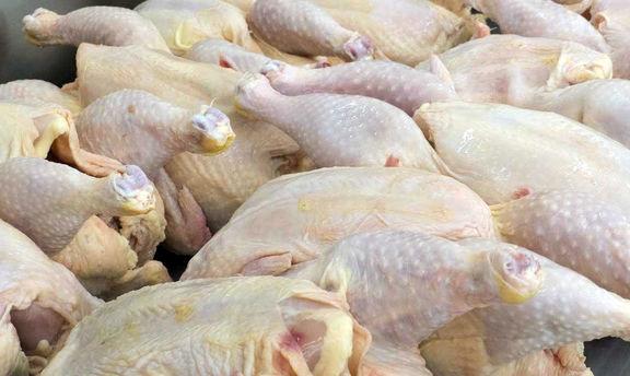 واکنش دولت به افزایش قیمت مرغ؛ توزیع مرغ 7 هزار تومانی در میادین آغاز شد