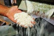 نصب نرخنامه بر سردرب کارخانه های شالیکوبی در گیلان