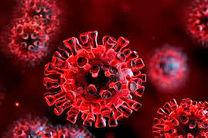 فوت ۵ نفر بر اثر ابتلا به کرونا ویروس در هرمزگان