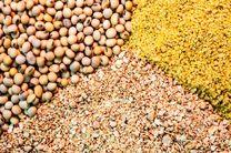 کشف محموله میلیاردی خوراک دام در بوئین و میاندشت
