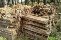 کشف 6 تن چوب قاچاق در لنگرود
