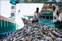 افزایش صددرصدی صید فانوس ماهی از آبهای هرمزگان/ صید بیش از 12 هزار تن فانوس ماهی
