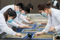 چین نخستین محصول برنج فضایی را برداشت کرد
