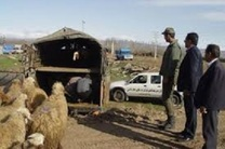 دستگیری باند سارقان احشام در گلپایگان