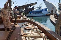 توقیف ده تن ماهی قاچاق در قشم