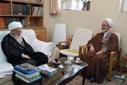 دیدار و گفتوگوی مدیر حوزههای علمیه با آیتالله صافی گلپایگانی