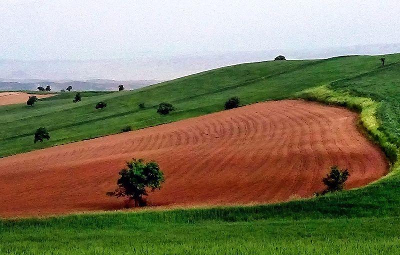 رفع تداخل 812 هکتار از اراضی کرمانشاه