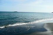 لایحه پروتکل حفاظت از تنوع زیستی دریای خزر تصویب شد