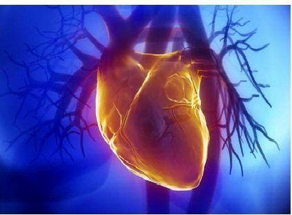بیماریهای قلبی اولین علت مرگ در جهان