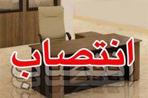 مدیرعامل شرکت نمایشگاههای بینالمللی اصفهان منصوب شد