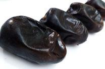 صادرات خرما تا اطلاع ثانوی ممنوع شد