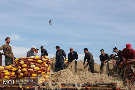 فصل صید ماهیان استخوانی دریای خزر
