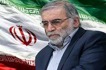 واکنشهای بینالمللی به ترور شهید محسن فخری زاده