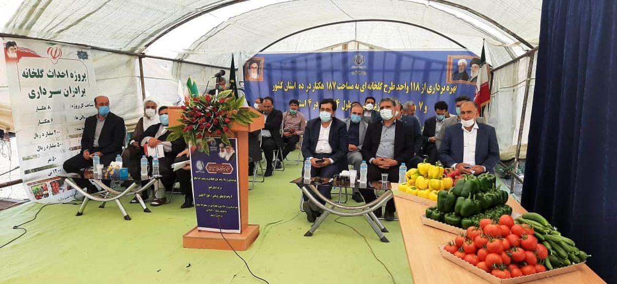 96 هکتار گلخانه در شمال استان اردبیل به بهره برداری رسید
