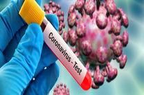 آخرین آمار مبتلایان به ویروس کرونا در جهان/ تاکنون ۴۲۲هزار و ۹۴۵ نفر مبتلا شدهاند