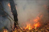 ابتکار به مناطق جنگلی پاسارگاد نرفت / هوای شیراز گرم بود