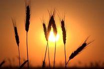 ششمین همایش ملی روز جهانی خاک در مشهد برگزار می شود