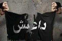 فرمانده کلیدی داعش کشته شد