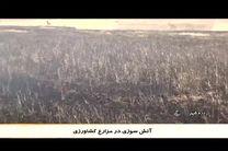 آتش به جان زمین های کشاورزی دره شهر افتاد