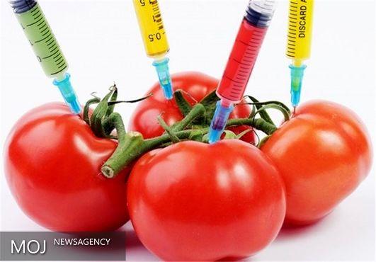 شیوه نامه مرتبط با موجودات دستکاری شده ژنتیکی ابلاغ شد