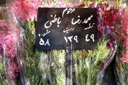 پیکر محمدرضا باطنی در بهشت زهرا به خاک سپرده شد