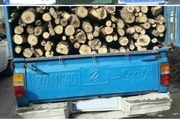 کشف و ضبط  15 تن هیزم غیرمجاز جنگلی در عباس آباد