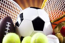 شهرستان خمینی شهر می تواند  قطب ورزش های توپی شود