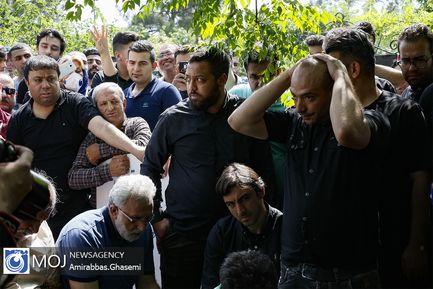هشتمین سالگرد درگذشت ناصر حجازی