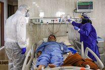 بستری شدن ۸۴ بیمار جدید مبتلا به ویروس کرونا در اصفهان
