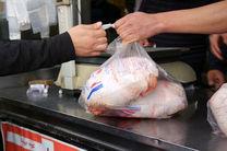 عرضه بیش از 240 تن گوشت مرغ در کردستان طی یوم جاری