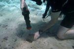 ابزارهای برقی بی سیم زیر آب کار می کند