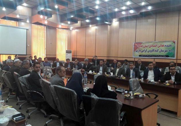 ۴۹ درصد واحدهای تولیدی استان گلستان نیمهفعال است/ دولت حمایتی از سرمایهگذار ندارد