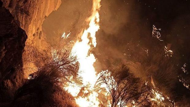 خبر آزاد شدن با وثیقه عاملان آتش سوزی خائیز کذب محض است