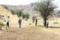 مبارزه با ملخهای صحرایی به بشاگرد رسید/سمپاشی ۲۰۰ هکتار از مزارع بشاگرد