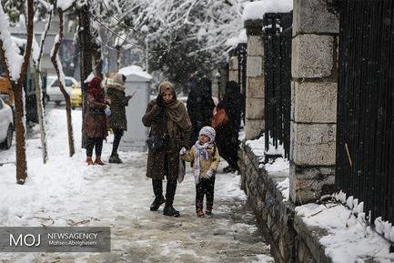 پارک شهر نیایید، تعطیل است