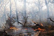 وزش باد گرم  9 هکتار از جنگل ها و مراتع استان را طعمه حریق کرد