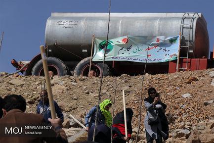 همایش پیاده روی خانوادگی و کاشت درخت در کرمانشاه