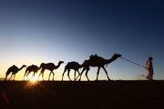 سرمایه گذاری عربستان در صنعت توریسم روسیه