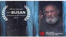 کدام فیلم های ایرانی در جشنواره فیلم بوسان امسال حضور دارند