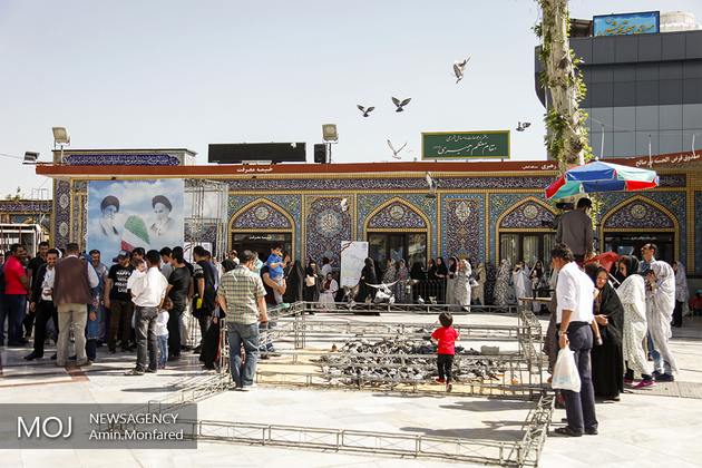 اذعان رسانه ارگان سران حجاز به حمایت مردم ایران از نظام