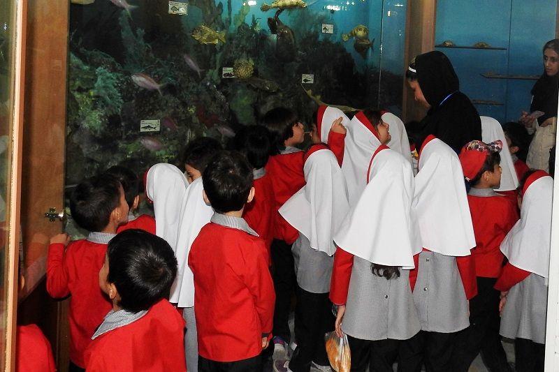 کودکان اصفهانی از موزه تنوع زیستی اصفهان دیدن کردند
