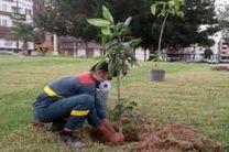 افزایش ۴۰ درصدی حقوق کارگران تنظیف و فضای سبز