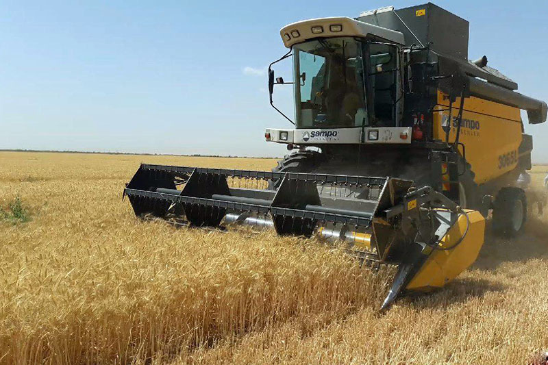شرایط و چگونگی خرید تضمینی محصولات زراعی و کشاورزی اعلام شد