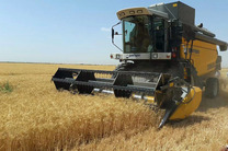رشد 35 درصدی بهره وری تولیدات کشاورزی