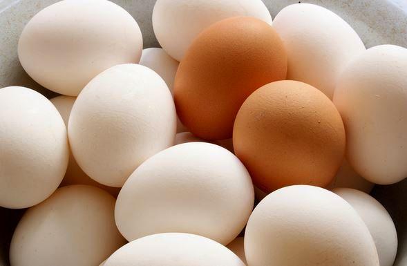 کنترل بازار تخممرغ با انجام واردات