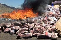 16 تن مواد غذایی فاسد و غیربهداشتی در هرمزگان معدوم شد
