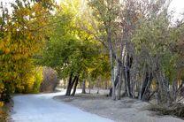 همه راه های اصلی ناژوان اصفهان بسته می شود