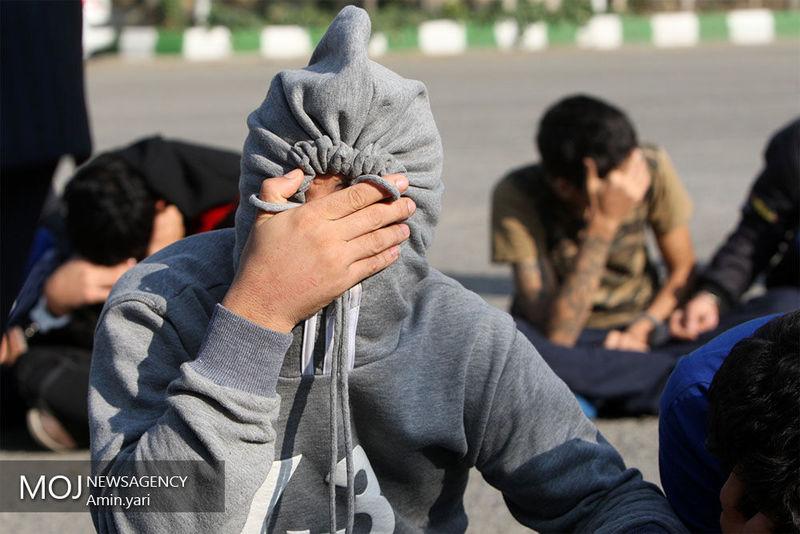 دستگیری سارقان در ملایر
